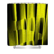 Look Of The Cat Shower Curtain