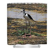 Look Out For That Egret- Mother Stilt Said Shower Curtain