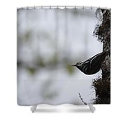 Looking Ahead Shower Curtain