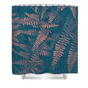 Looking At Ferns Another Way Shower Curtain