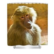 Looking At You. Shower Curtain