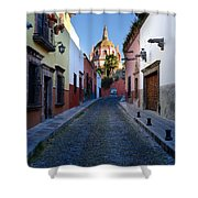 Looking Down Aldama Street, Mexico Shower Curtain