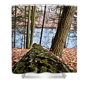 Looking Downhill Shower Curtain
