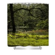 Looking For Food Merged Image Shower Curtain
