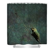 Looking For Monet 1 Shower Curtain