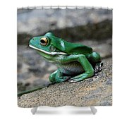 Looking Green Shower Curtain