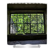 Looking Through Old Basement Window On To Vibrant Green Foliage Fine Art Photography Print  Shower Curtain
