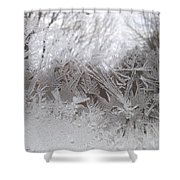 Looking Through The Frost Iv Shower Curtain