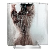 Looking Through The Glass Shower Curtain by Jt PhotoDesign
