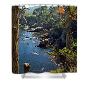 Looking Through The Trees At Point Lobos Shower Curtain