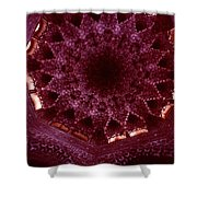 Looking Up Alhambra Stalactite Dome Shower Curtain