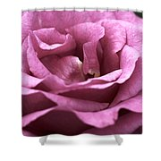 Looking Up - Dusty Rose Shower Curtain