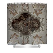 Looking Up Lucern Shower Curtain
