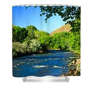 Looking Up Pine Creek Shower Curtain
