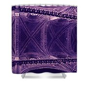 Looking Up Siena Cathedral Shower Curtain