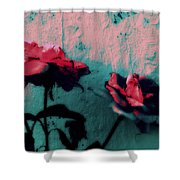 Looks Like Painted Roses Abstract Shower Curtain