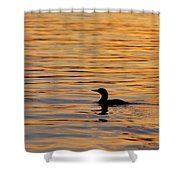 Loon At Sunset 6958 Shower Curtain