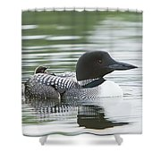 Loon Chick Rise And Shine Shower Curtain
