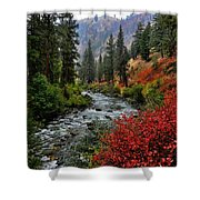 Loon Creek In Fall Colors Shower Curtain