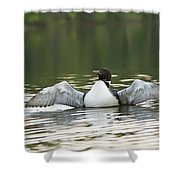 Loon Wing Spread - Drying Off Shower Curtain