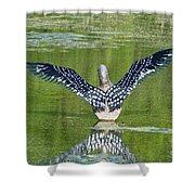 Loon Wings Shower Curtain