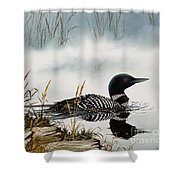 Loons Misty Shore Shower Curtain