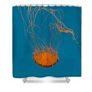 Loop To Loop Orange Nettle Shower Curtain
