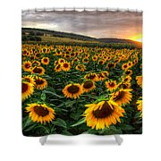 Lord Of The Sun Shower Curtain