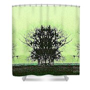 Lord Of The Trees Shower Curtain