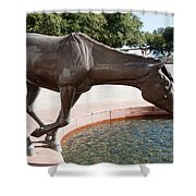 Los Colinas Mustangs 14687 Shower Curtain