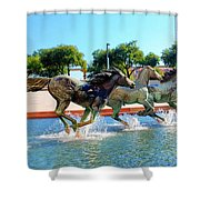 Los Colinas Mustangs 14698 Shower Curtain