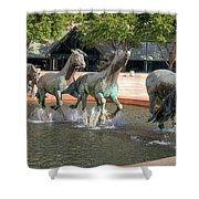 Los Colinas Mustangs 14707 Shower Curtain