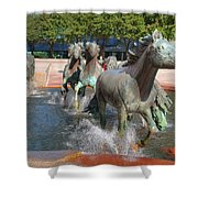 Los Colinas Mustangs 14710 Shower Curtain