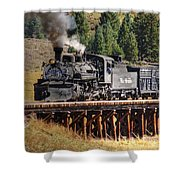 Los Pinos Bridge And Cattle Train Shower Curtain
