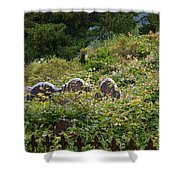 Lost Amongst The Vines Shower Curtain