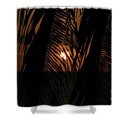 Lost And Found In Sunset Land Shower Curtain