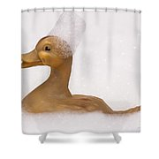 Lost And Found Rubber Ducky Shower Curtain
