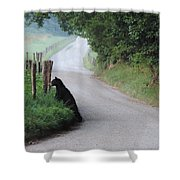 Lost Bear Cub In Cades Cove Shower Curtain
