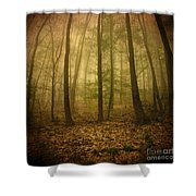 L.ost Shower Curtain