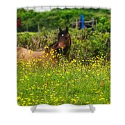 Lost In Buttercups Shower Curtain