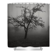 Lost In The Fog Shower Curtain