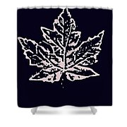 Lost Leaves Shower Curtain