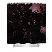 Lost Sparrow Shower Curtain