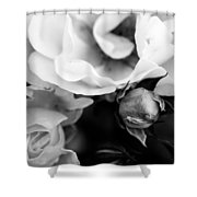 Lots Of Love  Shower Curtain