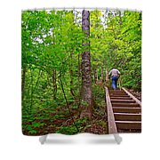 Lots Of Steps On La Chute Trail In Forillon Np-qc Shower Curtain