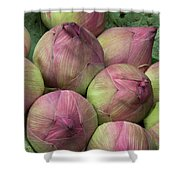 Lotus Buds Shower Curtain