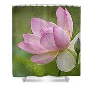 Lotus Dance Shower Curtain