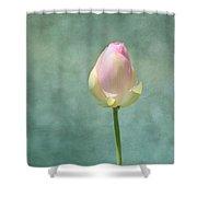 Lotus Flower Bud Shower Curtain