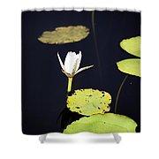 Lotus Flower- Gungarre Billabong V2 Shower Curtain