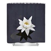 Lotus Flower- Gungarre Billabong V4 Shower Curtain